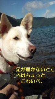 a0132275_14181887.jpg