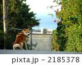 d0261484_1405847.jpg