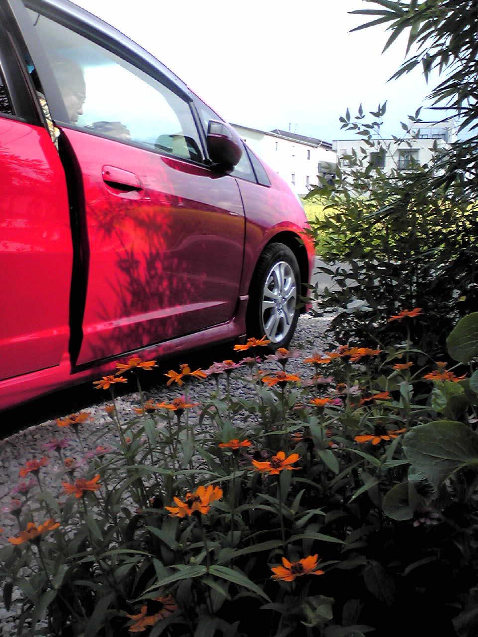 じいじの真っ赤なハイブリッドカーに乗って_e0220493_21872.jpg