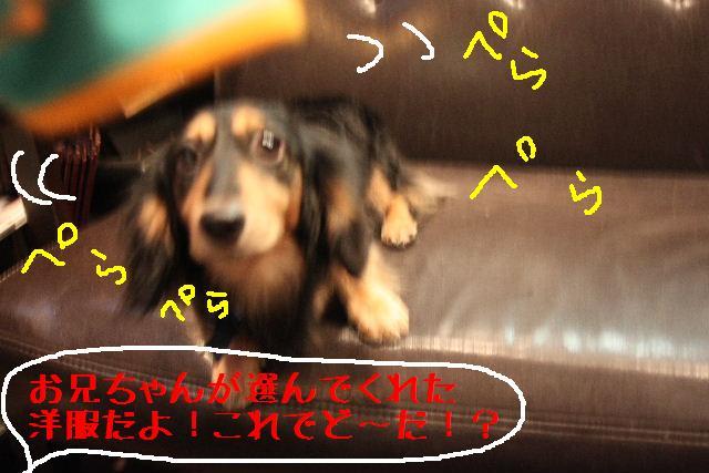 年末年始の予約開始しまぁ~す!!_b0130018_2384323.jpg
