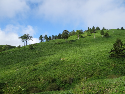 恵那山方面へ行ってきました。_d0254540_1484832.jpg