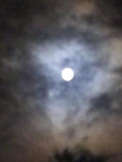 満月_a0272042_8311798.jpg