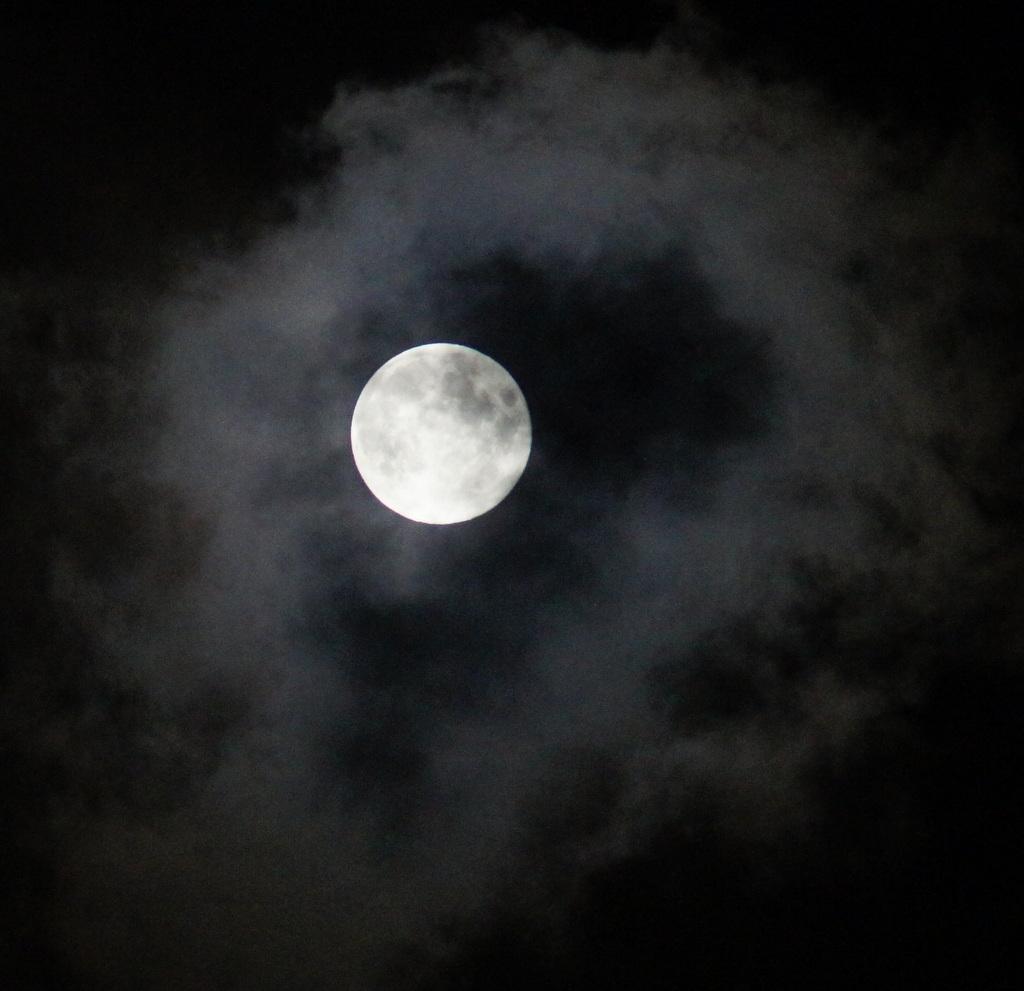 今夜は幸運を招いてくれるブルームーン、綺麗に見えましたね!_c0180686_625455.jpg