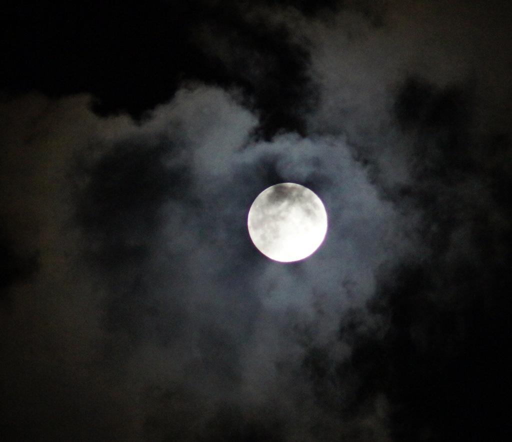 今夜は幸運を招いてくれるブルームーン、綺麗に見えましたね!_c0180686_6255373.jpg