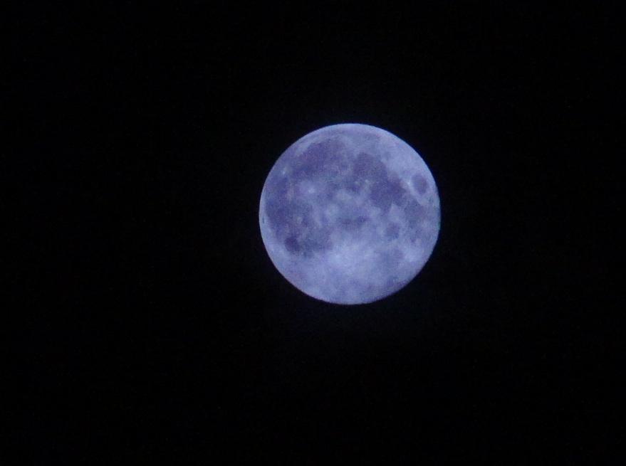 今夜は幸運を招いてくれるブルームーン、綺麗に見えましたね!_c0180686_6265175.jpg