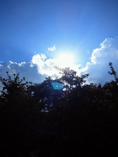 晴天ですが…_a0043697_21394354.jpg