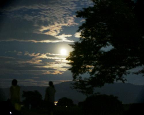 夏の終わりの素敵な夕べ。_d0077603_913598.jpg