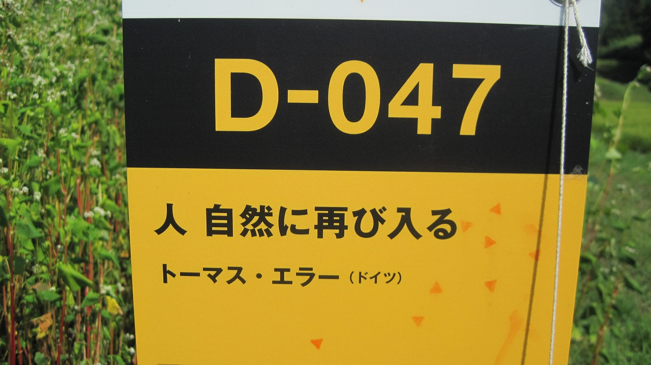 b0163804_1462362.jpg