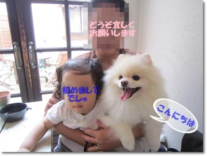 b0167519_2151087.jpg