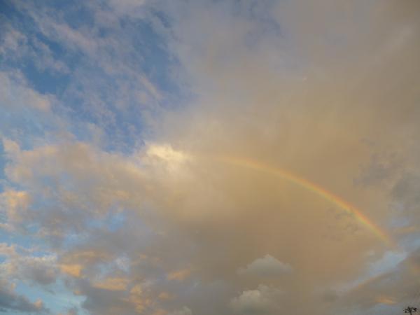 虹!_c0004024_18571644.jpg