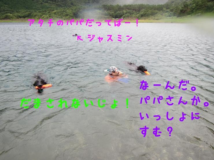 c0237824_14555786.jpg