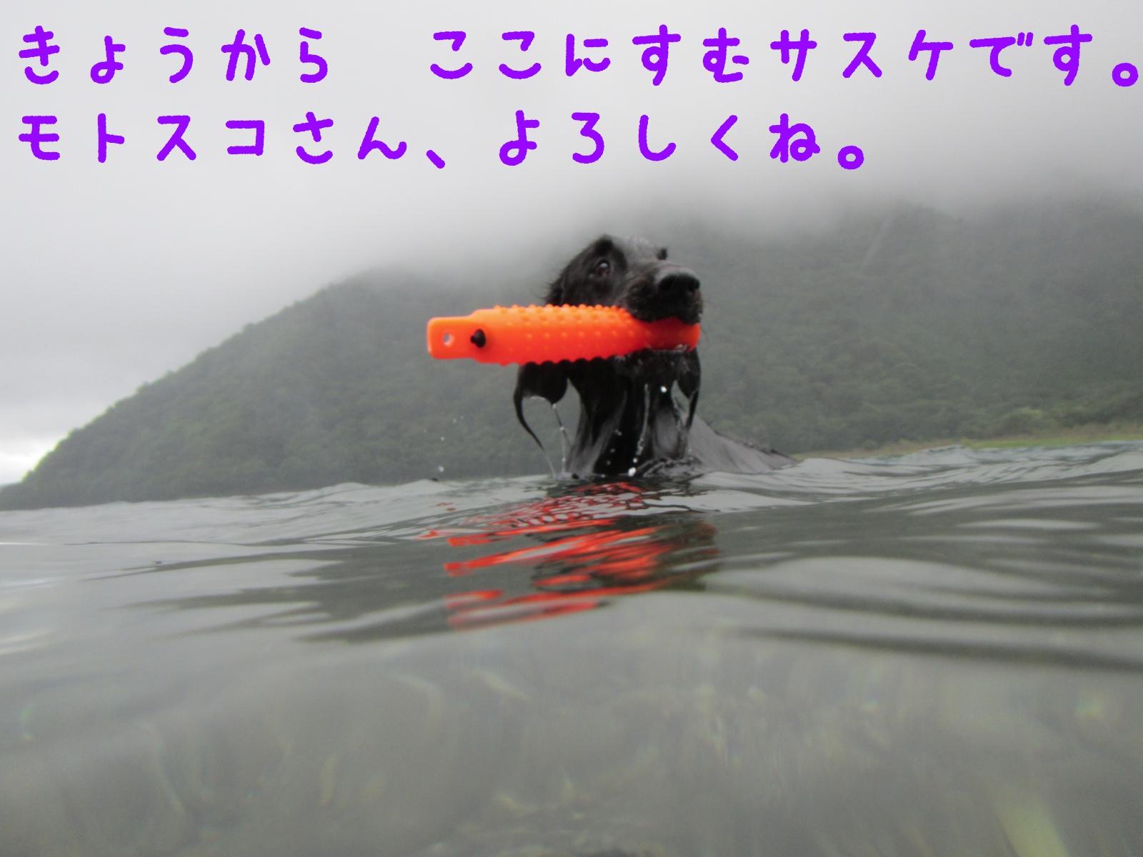 c0237824_1463655.jpg