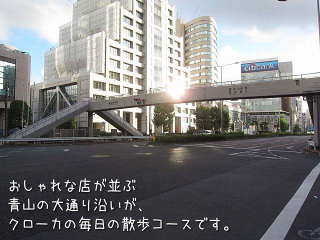 土曜日おじ散歩2連発_c0062832_6113919.jpg