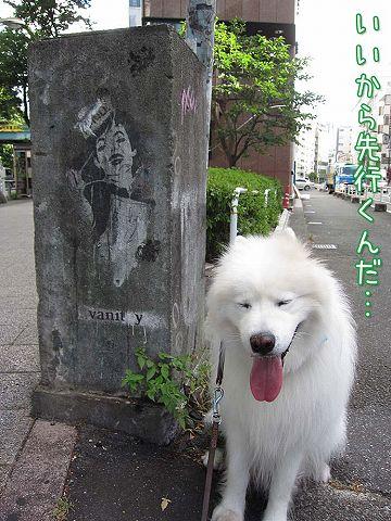 土曜日おじ散歩2連発_c0062832_6114760.jpg
