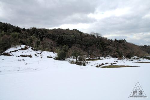 144 嵩山 ~2011年初撮りのつもりが・・・~_c0211532_23272378.jpg