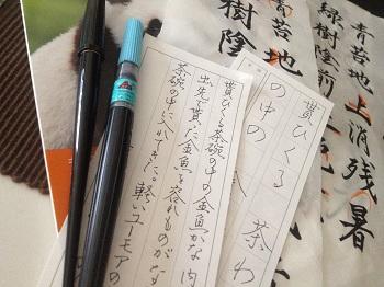 ペンは剣よりも・・・?_c0069036_14583098.jpg