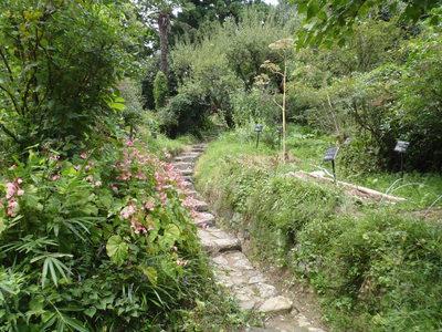 森野旧薬園に行ってきました_b0252363_19281211.jpg