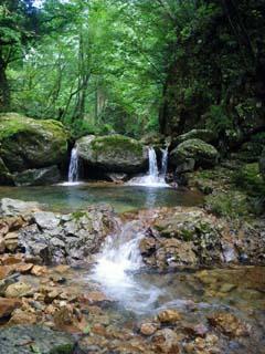 明石谷支流ナラ谷大滝から明石1141.3m_a0133014_18121511.jpg