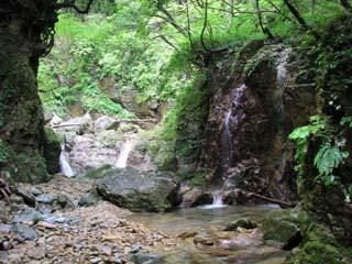 明石谷支流ナラ谷大滝から明石1141.3m_a0133014_18122735.jpg