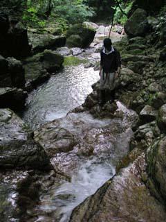 明石谷支流ナラ谷大滝から明石1141.3m_a0133014_1812537.jpg