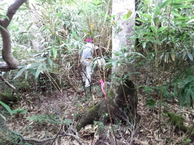 赤倉山、初登頂!!_f0101226_1823993.jpg