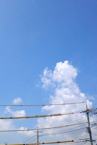 d0090744_2010411.jpg