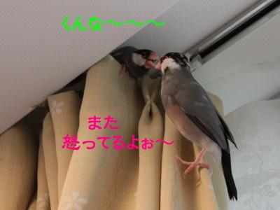 b0158061_20441041.jpg