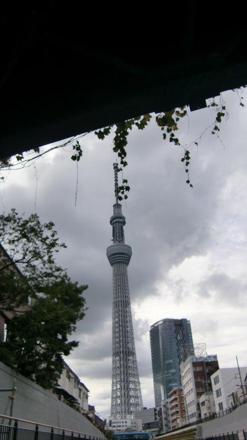 雨あがりの日曜日_c0249569_20573385.jpg