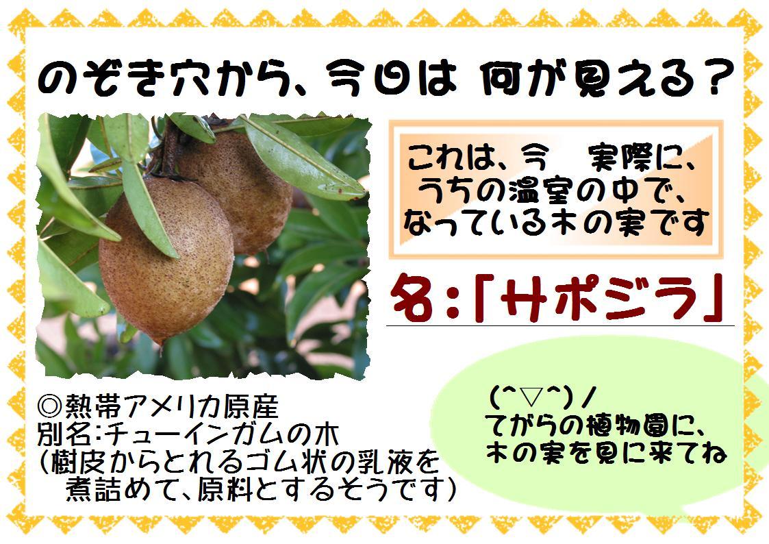 f0203094_104603.jpg