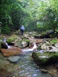 明石谷支流ナラ谷大滝から明石1141.3m_a0133014_2131446.jpg