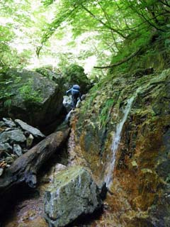 明石谷支流ナラ谷大滝から明石1141.3m_a0133014_21532591.jpg