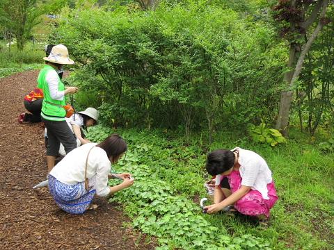 長野県、軽井沢、松本、安曇野をすがすがしく走る。_d0046025_0125739.jpg