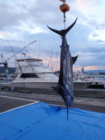 関東 S艇さんからヒョータン沖の画像が届きました!【カジキ・マグロトローリング】_f0009039_1044422.jpg