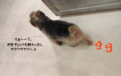 b0249672_20122685.jpg