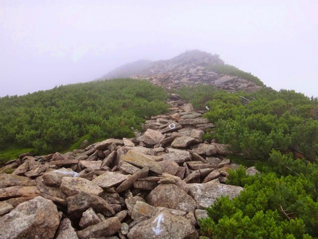 2012/08/29-30 UTMH(Ultra Trail Mount Hotaka)_b0220886_23114968.jpg