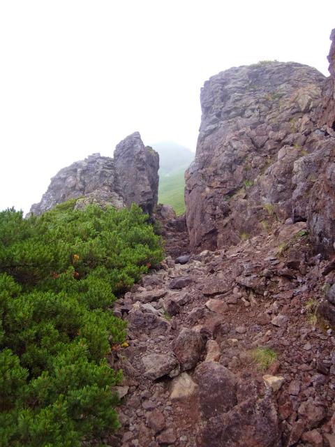 2012/08/29-30 UTMH(Ultra Trail Mount Hotaka)_b0220886_23211936.jpg