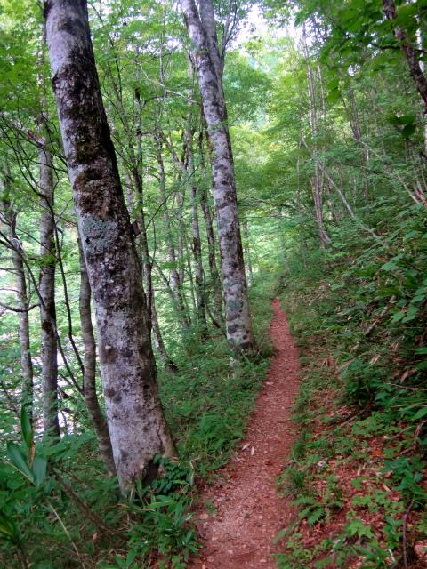 2012/08/29-30 UTMH(Ultra Trail Mount Hotaka)_b0220886_2325327.jpg