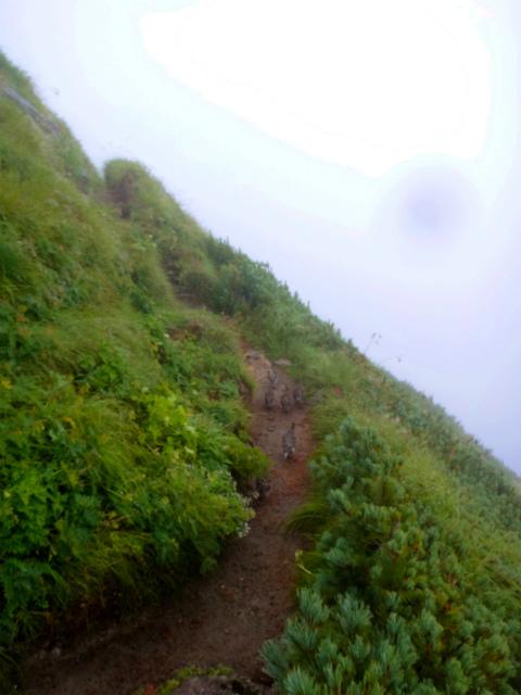 2012/08/29-30 UTMH(Ultra Trail Mount Hotaka)_b0220886_23314961.jpg