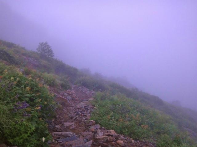 2012/08/29-30 UTMH(Ultra Trail Mount Hotaka)_b0220886_2352108.jpg