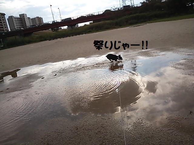 ★泥水祭り★_d0187891_2059817.jpg