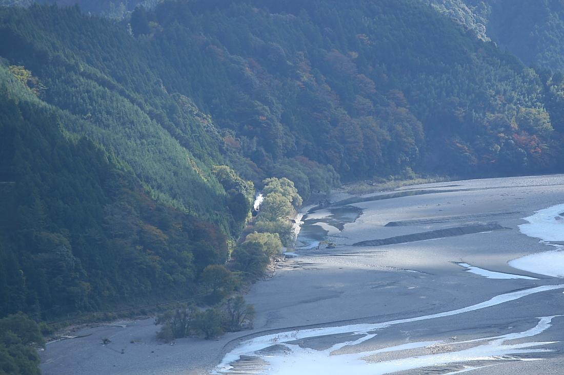 スポットライト - 2011年・大井川 -  _b0190710_2205561.jpg