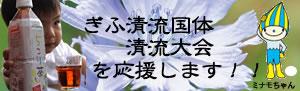 岐阜っぽ。_d0063218_12334795.jpg