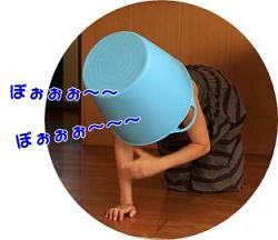 c0145250_9525923.jpg