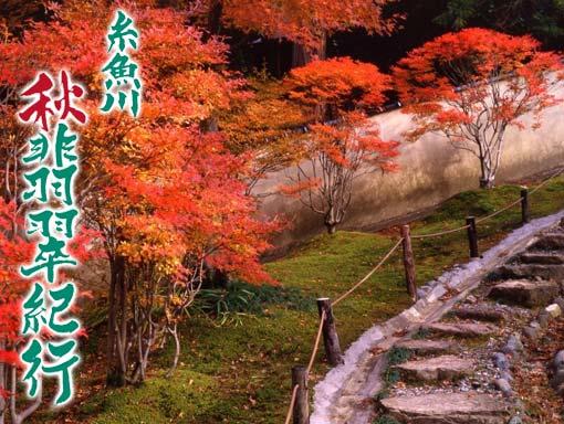 * 糸魚川 秋の 定期観光バス *_d0235898_13201978.jpg