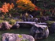 * 糸魚川 秋の 定期観光バス *_d0235898_13254278.jpg