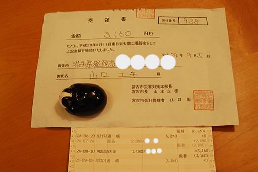 ポストカード収支及び募金のご報告(05)(宮古報告)_b0259218_5483967.jpg