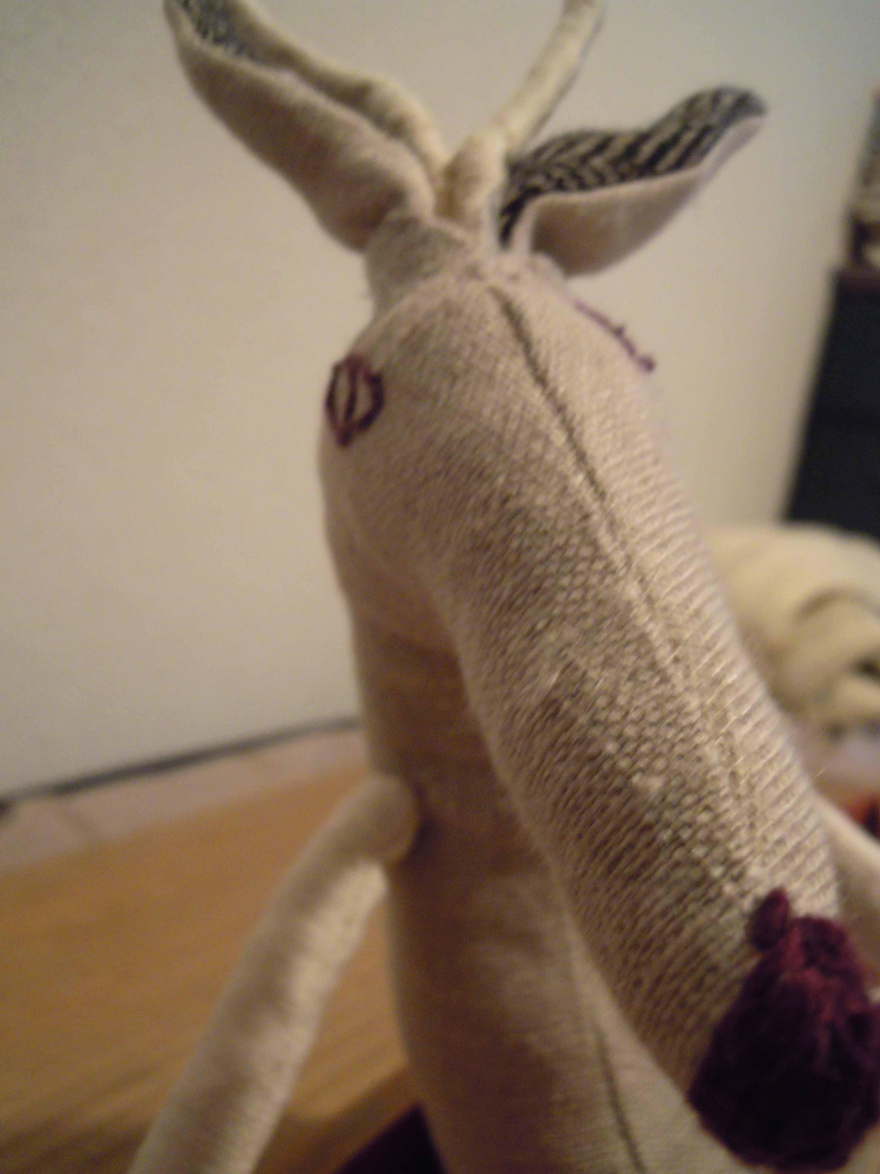 鹿と船。_e0256436_17461534.jpg