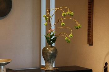 花だより_a0279848_9555966.jpg