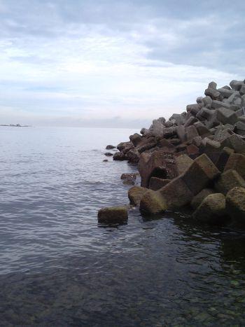 やはり鳴門で根魚釣りが堅い_a0007462_14315379.jpg