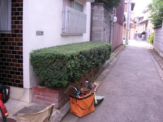 生垣バリカン_e0089564_1882120.jpg